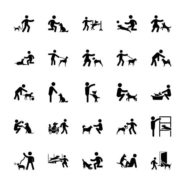 ilustraciones, imágenes clip art, dibujos animados e iconos de stock de conjunto de pictogramas de adiestramiento de perros - training