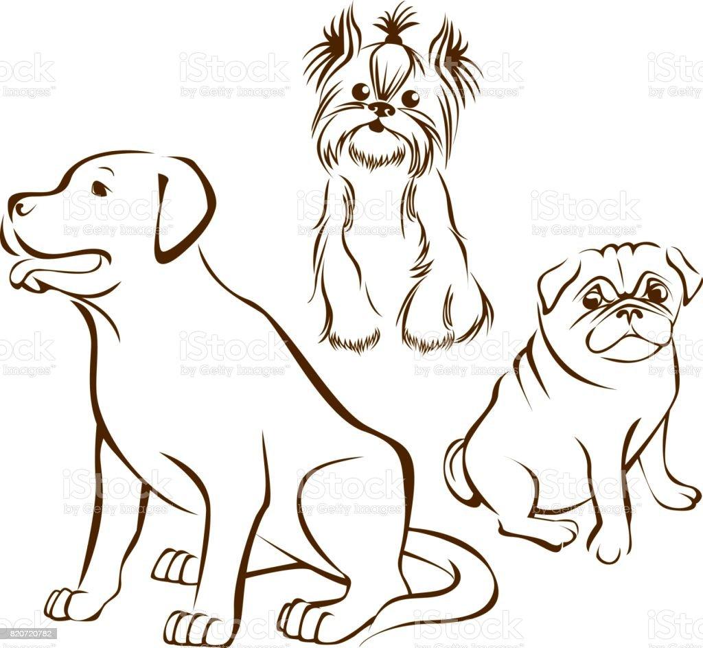 Set of dogs breeds vector art illustration