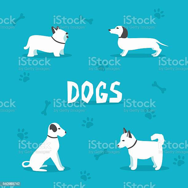 Set of dogs cartoon vector illustration vet clinic vector id540969742?b=1&k=6&m=540969742&s=612x612&h=ehzqbiynauzuehmqkp3 kwgfwlhw0tcnwdukt7nyfwg=