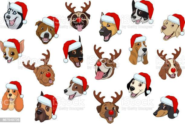 Set of dogs for christmas vector id867549726?b=1&k=6&m=867549726&s=612x612&h=l37saev x00mcz8p t6dcrhllkf b6pkfyhcgxo315o=