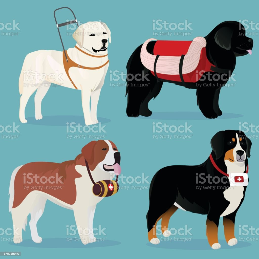 Set of dogs rescuers and helpers vector art illustration