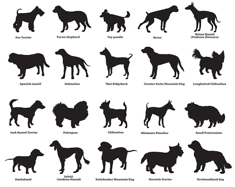 Set of dogs silhouettes-4