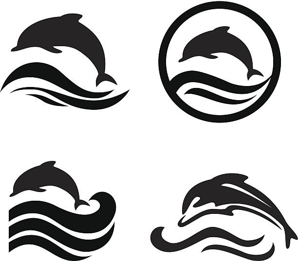 set of dolphins. - dolphin stock illustrations