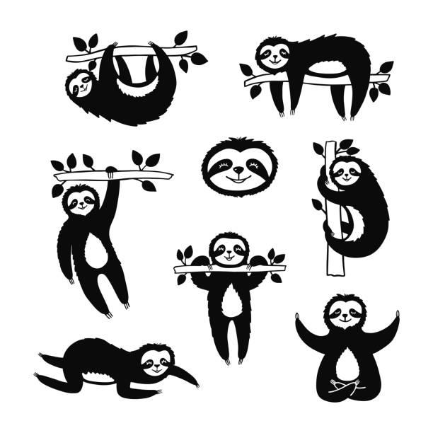 set von doodle slothes für druck-design, poster, t-shirt. nette zeichentrickfiguren. skizzieren sie tropische tiere. - faul ast stock-grafiken, -clipart, -cartoons und -symbole
