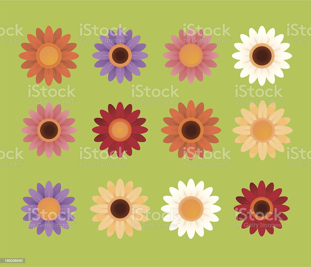 Set of drawings of colorful daisies vector art illustration