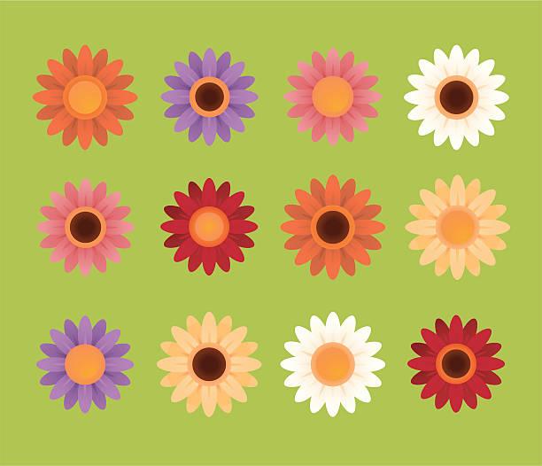красочные daisies - нивяник stock illustrations