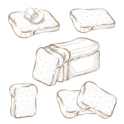 set of drawn sliced bread and toasts illustration isolated on white. wheat rye or whole grain square loaf with various bread slices. sandwich icons collection. Vector vintage engraved sketch. clip art.