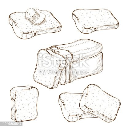 set of drawn sliced bread and toasts illustration isolated on white. wheat rye or whole grain square loaf with various bread slices. sandwich icons collection. Vector vintage engraved sketch. clip art