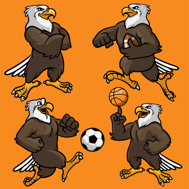 set of eagle sport mascot Vector set of eagle sport mascot mascot stock illustrations