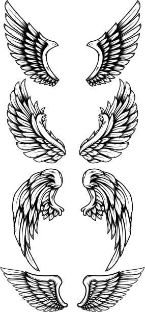 ilustraciones, imágenes clip art, dibujos animados e iconos de stock de conjunto de alas de águila en estilo tatuaje. elemento de diseño para etiqueta, cartel, cartel, tarjeta, camiseta. ilustración vectorial - tatuajes de ángeles