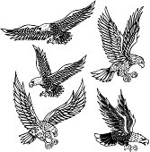 Set of eagles illustrations. Design element for  label, emblem, sign, poster, t shirt.