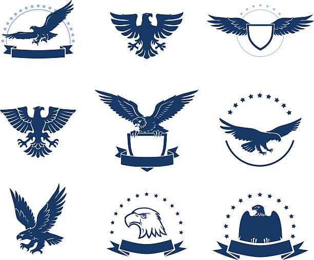 set of eagles silhouettes - 독수리 stock illustrations