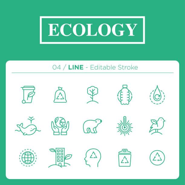 bildbanksillustrationer, clip art samt tecknat material och ikoner med uppsättning ekologi ikoner i linje - biologisk mångfald