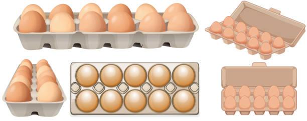 Satz von Ei in verschiedenen Winkeln – Vektorgrafik