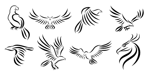 Set of eight line art vector logo of eagle. Can be used as a logo Or decorative items.