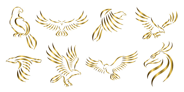 Set of eight line art vector logo of golden eagle. Can be used as a logo Or decorative items.