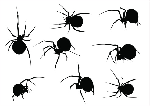 Set of eight vector scary spiders silhouettes
