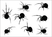 Set of eight vector scary spiders silhouettes. Easy to change colors. Nice choice for halloween designs.