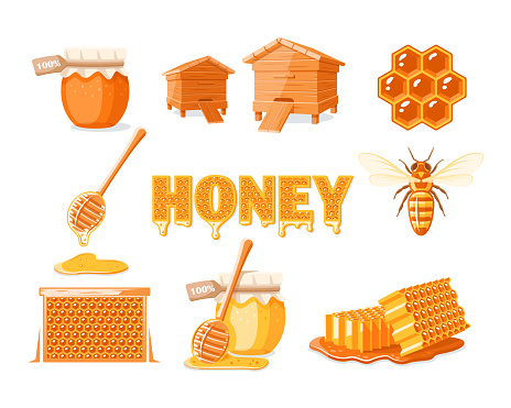 Set of elements of the honey concept