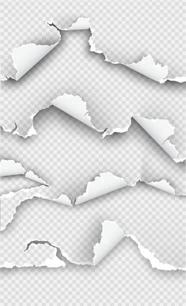 bildbanksillustrationer, clip art samt tecknat material och ikoner med uppsättning element transparent design mallar pappersrevor - hål