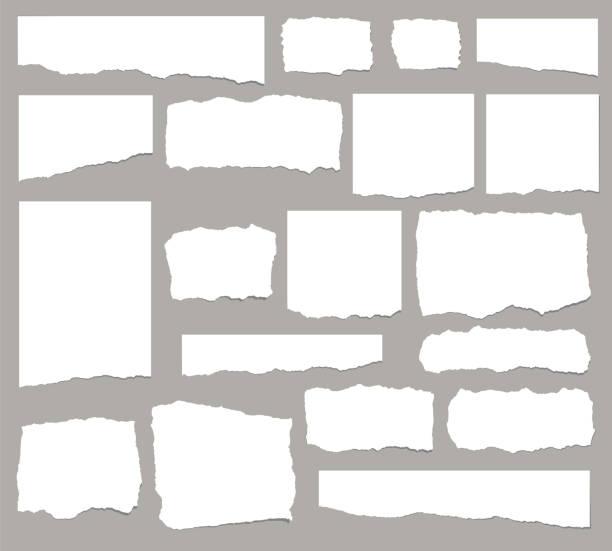 ilustrações, clipart, desenhos animados e ícones de conjunto de fragmentos de papel rasgado alongado isolados no fundo branco - papel