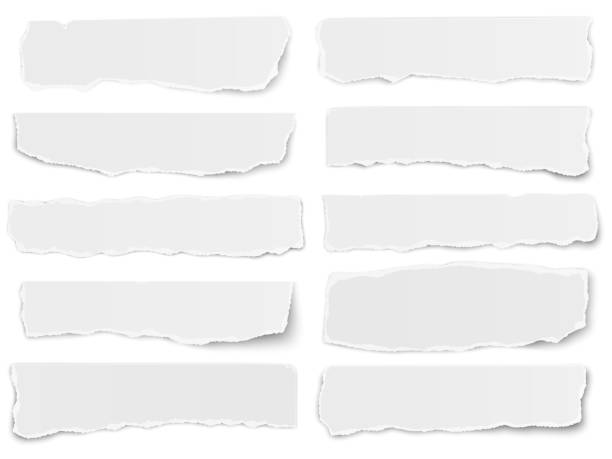 Set of elongated torn paper fragments isolated on white background Set of elongated torn paper fragments isolated on white background paper stock illustrations