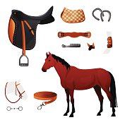 Set of equestrian equipment for horse