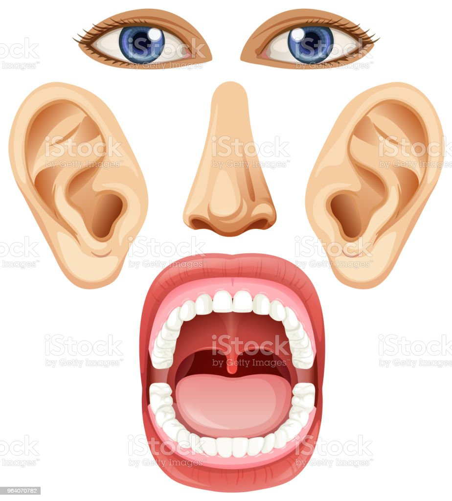 A Set of Facial Element - Royalty-free Art stock vector