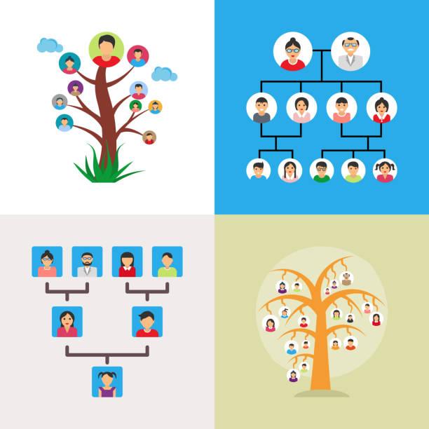 illustrations, cliparts, dessins animés et icônes de une série d'illustrations vectorielles arbre généalogique - arbres généalogiques