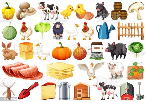 Set of farm objects vector id1136718992?b=1&k=6&m=1136718992&s=612x612&h=esdc hnzhpewoswzbmzmfz0yypgod2jxdfkqnwzgg4m=