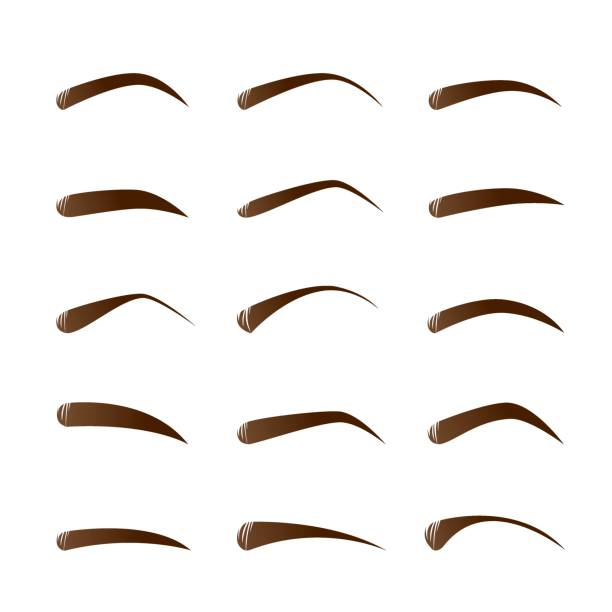 Royalty Free Silhouette Of Eyebrows Shapes Clip Art Vector Images