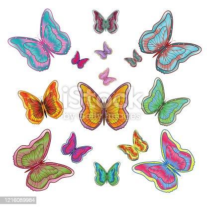 Fifteen bright, graceful butterflies Vector illustration