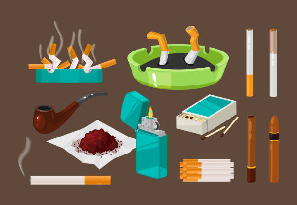 illustrazioni stock, clip art, cartoni animati e icone di tendenza di set of filter cigarettes, cigars with tobacco in ashtray, nicotine. - sigaretta