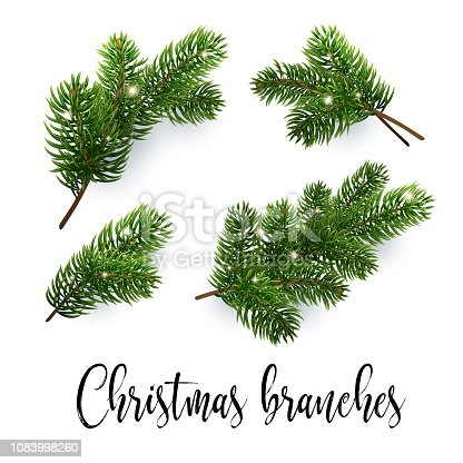 Christmas Branch Vector.Free Pine Tree Branch Clipart And Vector Graphics Clipart Me