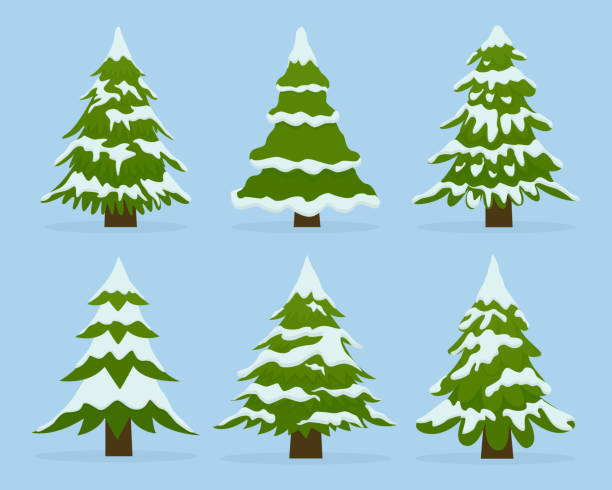 Set of firs in snow. Collection beautiful Christmas trees. vector art illustration