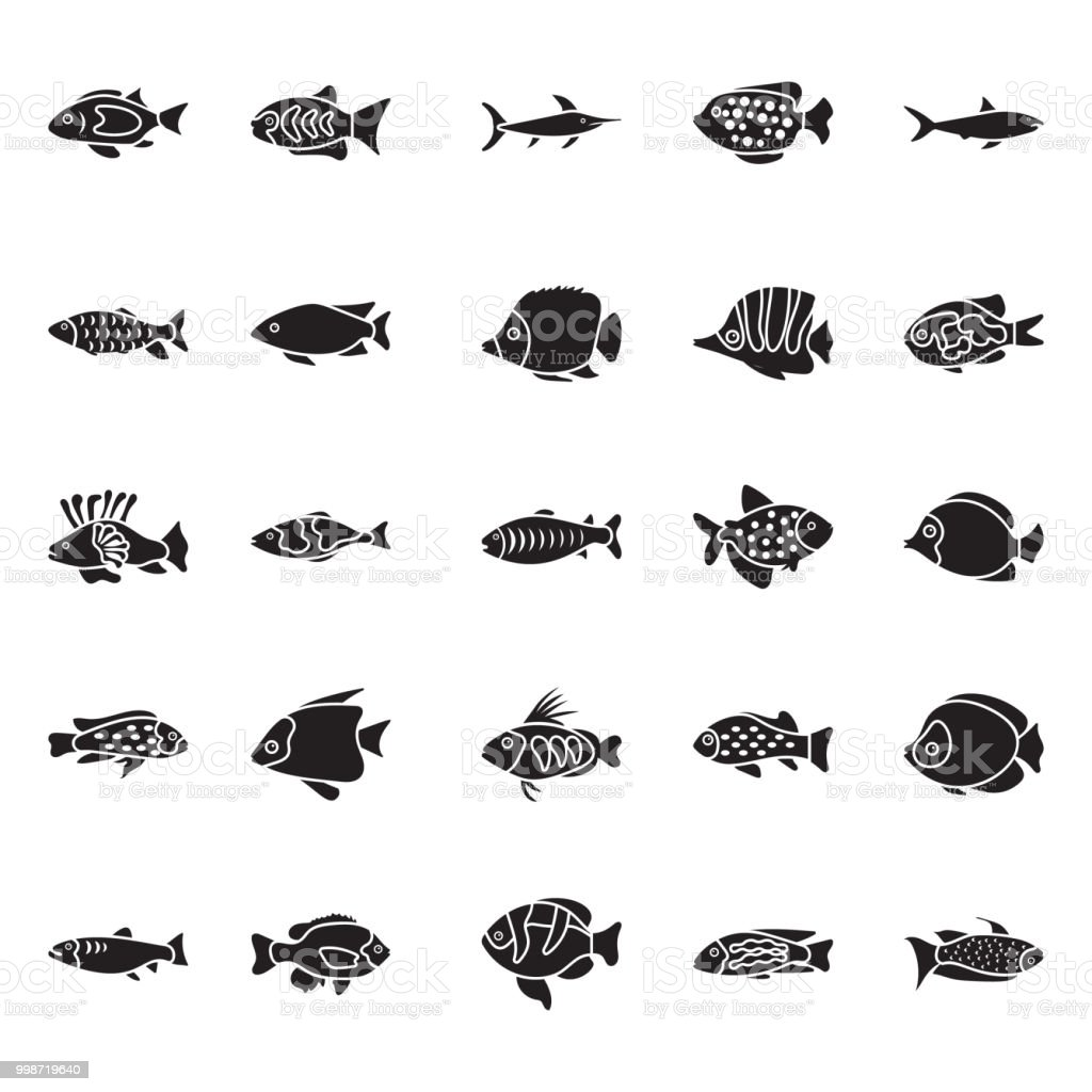Set of Fishes Glyph Vector Icons vector art illustration