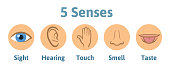 Set of five human senses icon: vision, hearing, smell, hearing, touch, taste. Eye, ear, hand, nose and mouth with tongue. Simple icons in circles, vector illustration., isolated on white.