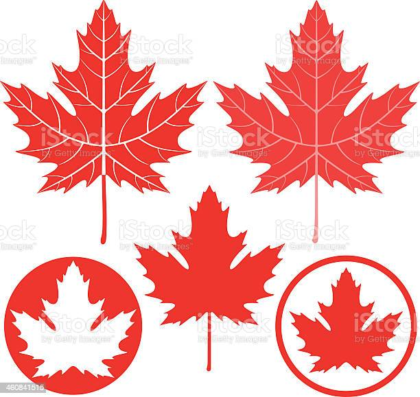 Maple Leaf Free Vector Art 16 731 Free Downloads