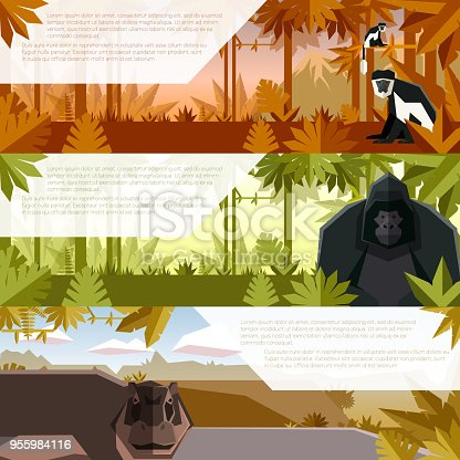 Vector image of the Set of flat banners with african animals colobus, gorilla and hippopotamus