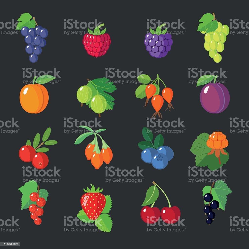 Set of flat berries. vector art illustration