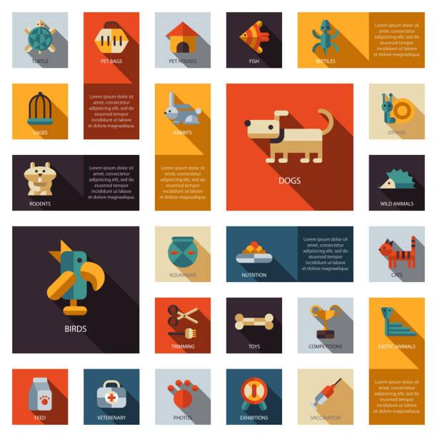 satz von flachen design-ikonen pet shop - hamsterhaus stock-grafiken, -clipart, -cartoons und -symbole