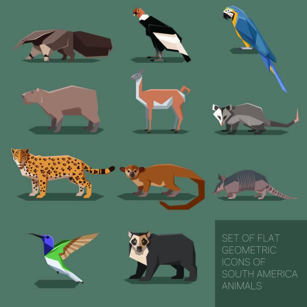 satz von flachen geometrischen südamerika tiere - ameisenbär stock-grafiken, -clipart, -cartoons und -symbole