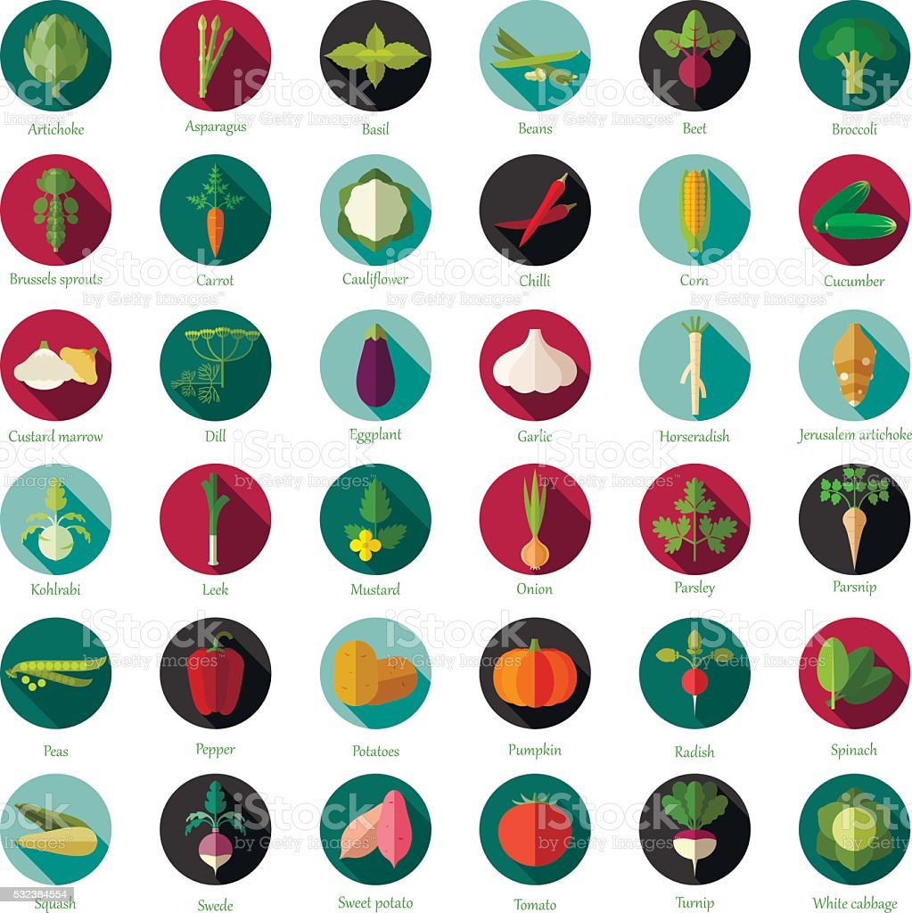 Set of flat round vegetable icons vector art illustration