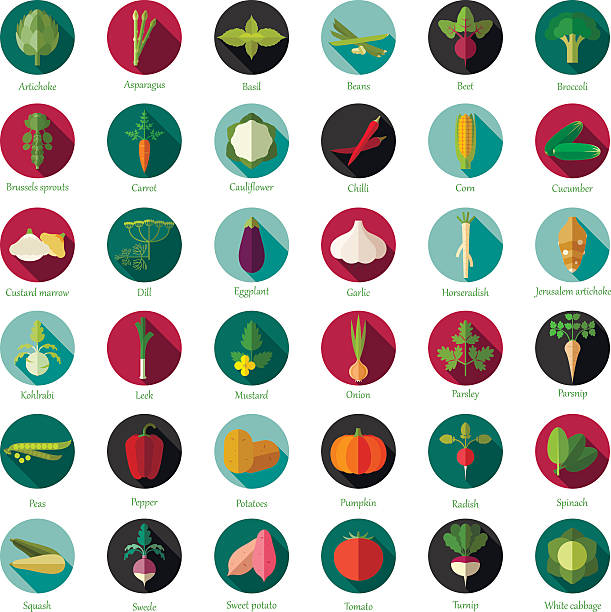 Set of flat round vegetable icons Vector image of the Set of flat round vegetable icons artichoke stock illustrations