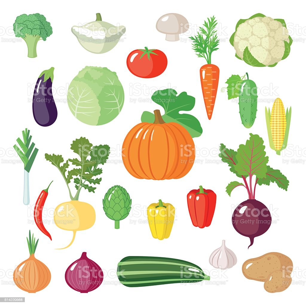 Set of flat vegetables. vector art illustration