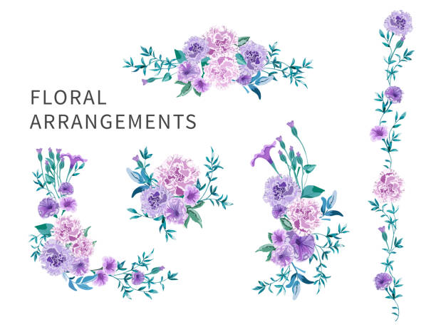 Set of floral arrangements with pink roses and purple peonies with green leaves. Set of floral arrangements for greeting card or wedding invitation on white background. Pink roses and purple peonies with green leaves. Vector romantic garden flowers in watercolor style. violet flower stock illustrations