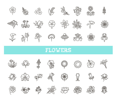 Set of floral icon in flat design