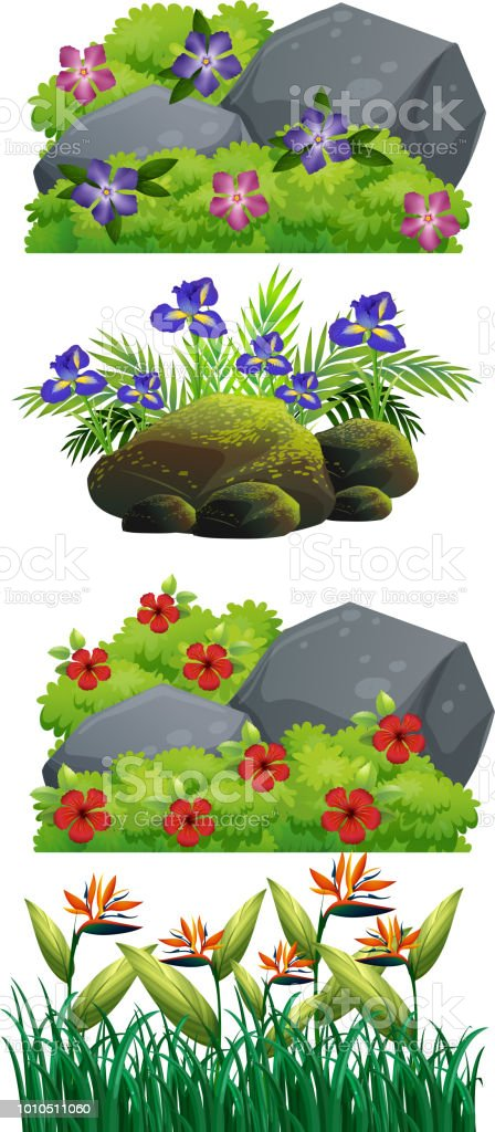 A set of flower and nature vector art illustration