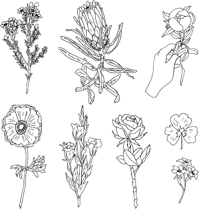 Set of flower and plant patches elements. Set of stickers, pins, patches and handwritten notes collection in cartoon 80s-90s comic style.Vector stikers kit