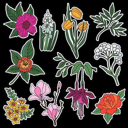 Set of flower and plant patches elements.
